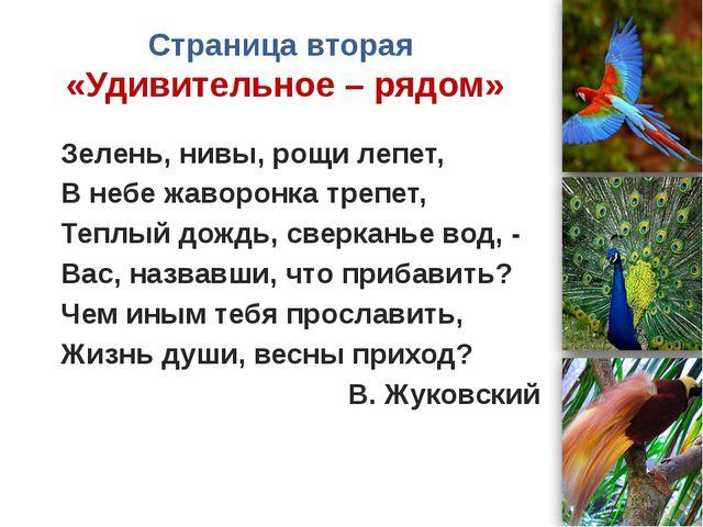 Страница вторая «Удивительное – рядом» Зелень, нивы, рощи лепет, В небе жавор...