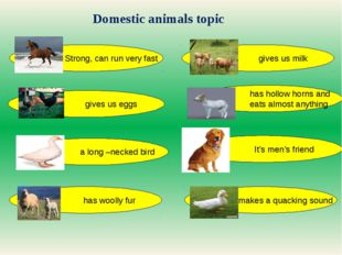 Domestic animals topic Strong, can run very fast gives us eggs gives us milk
