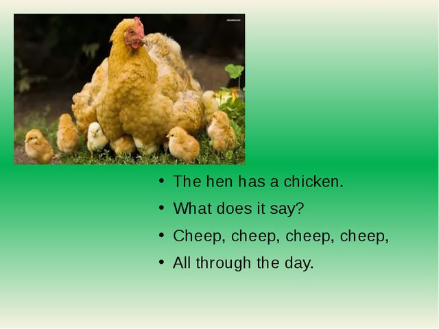 The hen has a chicken. What does it say? Cheep, cheep, cheep, cheep, All thr...