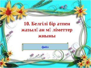 10. Белгілі бір атпен жазылған мәліметтер жиыны файл