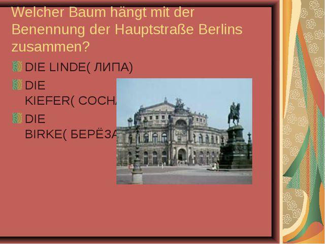 Welcher Baum hängt mit der Benennung der Hauptstraße Berlins zusammen? DIE LI...
