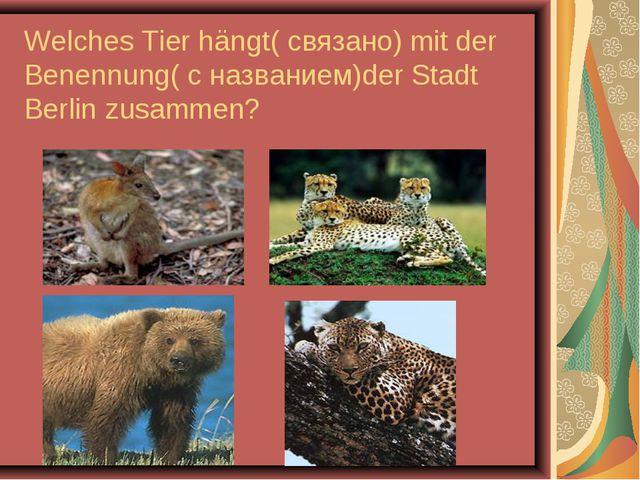 Welches Tier hängt( связано) mit der Benennung( с названием)der Stadt Berlin...