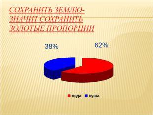 62% 38%
