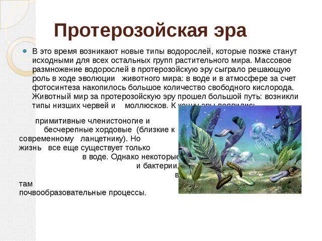 Протерозойская эра В это время возникают новые типы водорослей, которые позже...
