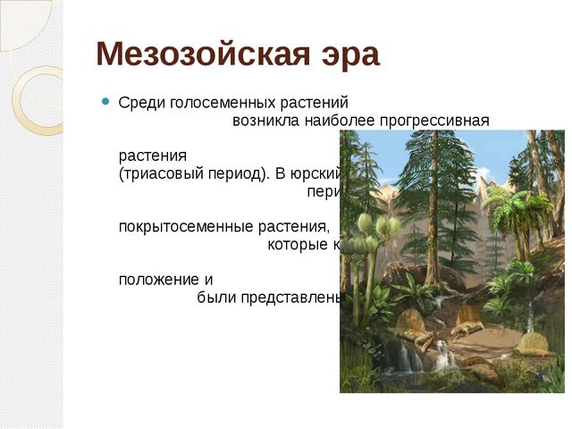 Мезозойская эра Среди голосеменных растений возникла наиболее прогрессивная в...