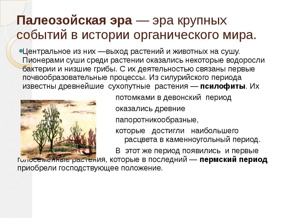 Палеозойская эра — эра крупных событий в истории органического мира. Централь...