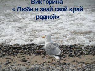 Викторина « Люби и знай свой край родной»