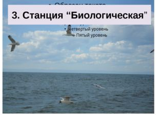 """3. Станция """"Биологическая"""""""