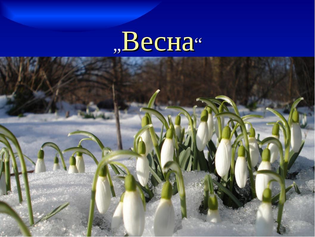 """""""Весна"""""""