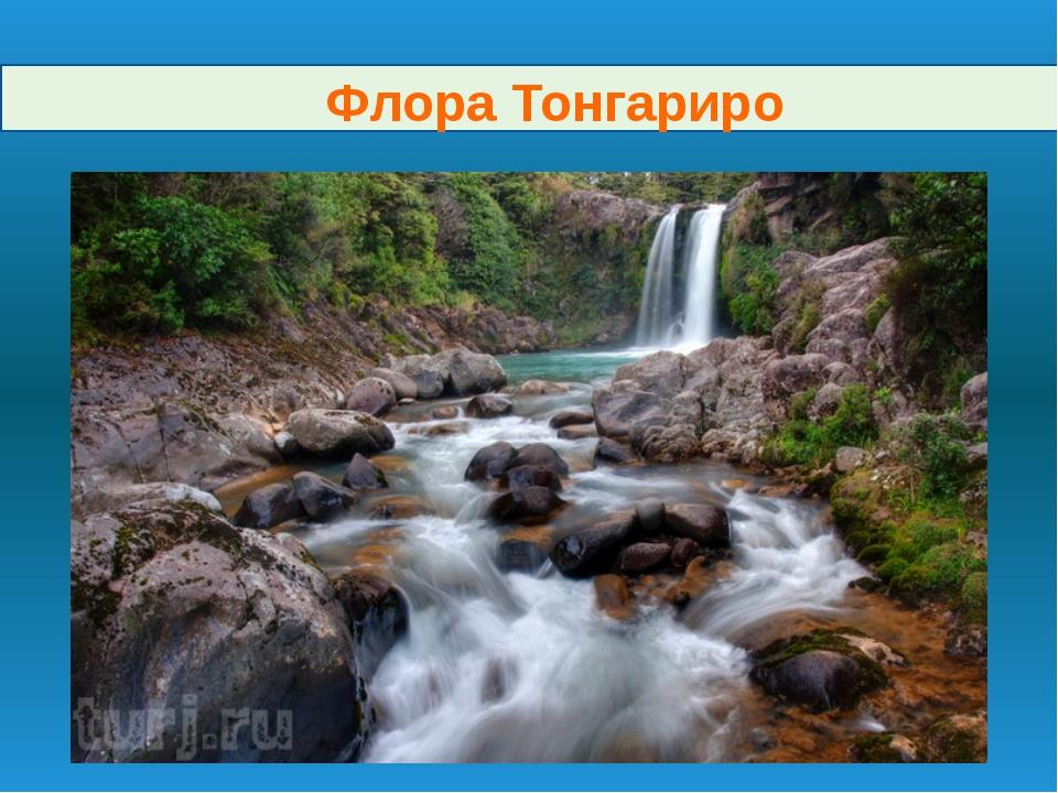 Флора Тонгариро