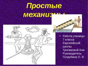 Простые механизмы Работа ученицы 7 класса Европейской школы Тропиковой Ани Ру