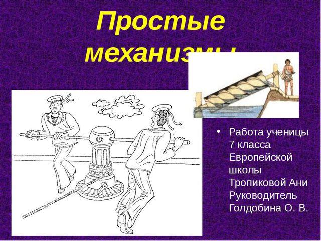 Простые механизмы Работа ученицы 7 класса Европейской школы Тропиковой Ани Ру...