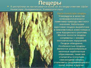Пещеры В республике их насчитывается более 10. Из пещер отметим: Шуби-Ныхасск