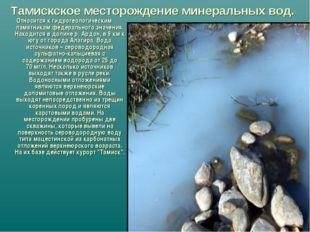Тамискское месторождение минеральных вод. Относится к гидрогеологическим памя
