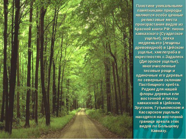 Поистине уникальными памятниками природы являются особо ценные реликтовые ме...