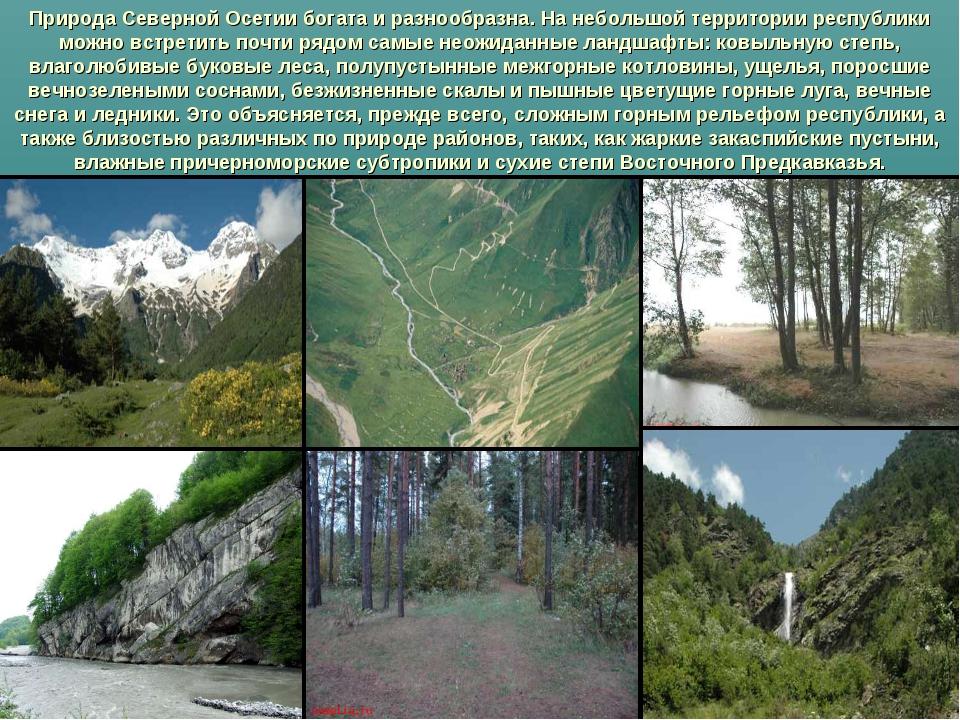 Природа Северной Осетии богата и разнообразна. На небольшой территории респуб...