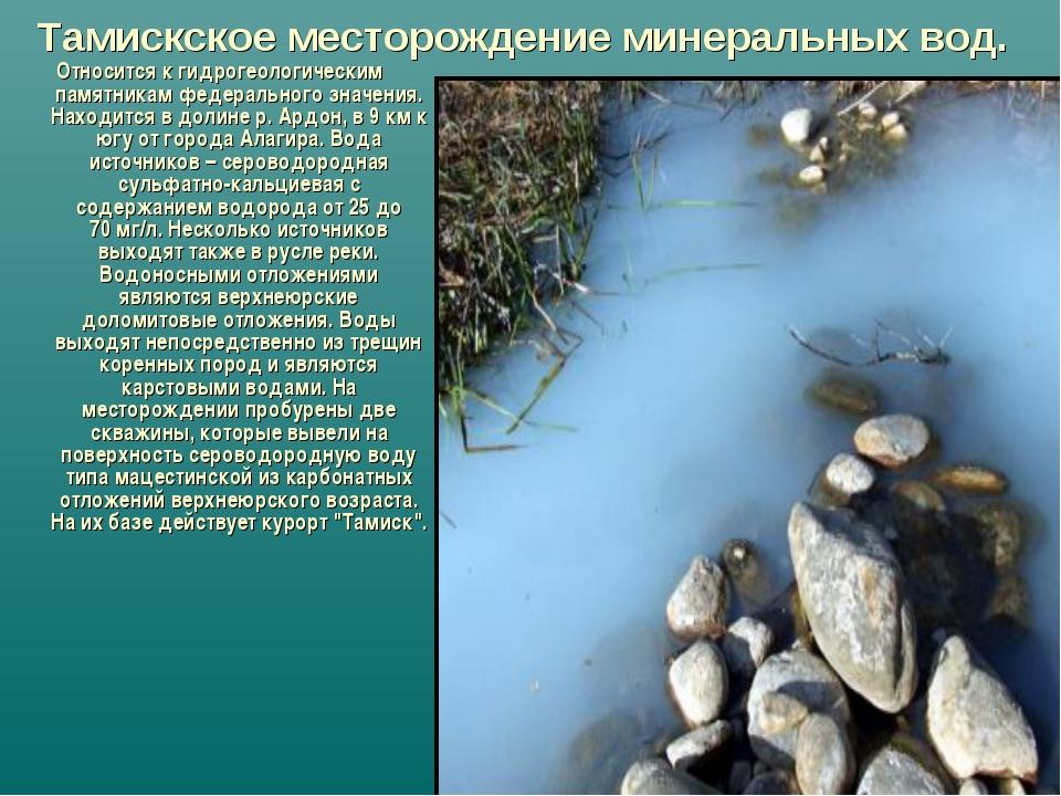 Тамискское месторождение минеральных вод. Относится к гидрогеологическим памя...