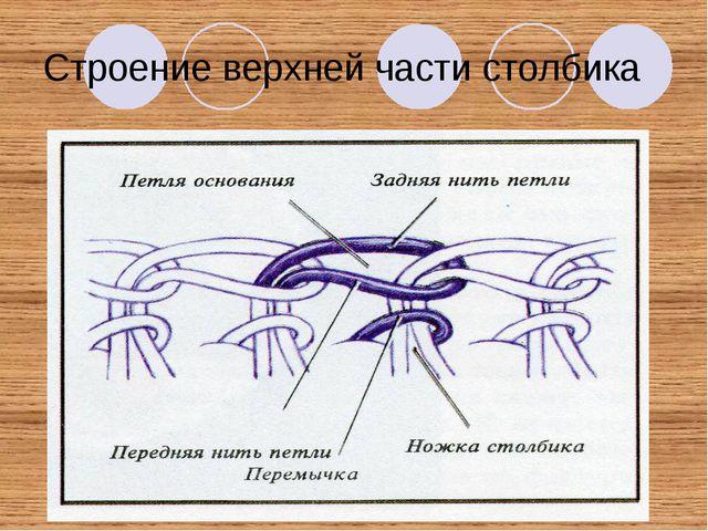 Строение верхней части столбика