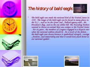 The history of bald eagle The bald eagle was made the national bird of the U
