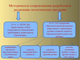 Методическое сопровождение разработки и реализации экологических программ Р.I