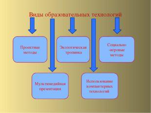 Виды образовательных технологий Проектные методы Мультимедийная презентация Э