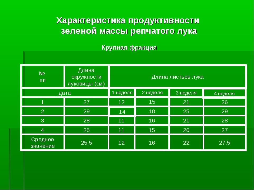 Характеристика продуктивности зеленой массы репчатого лука Крупная фракция 27...