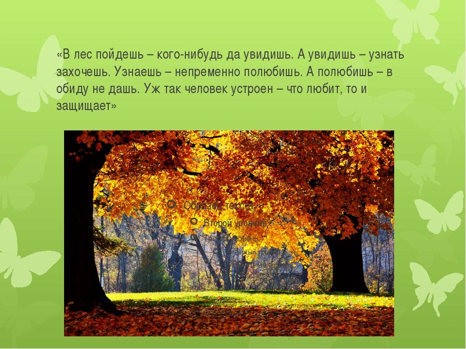 «В лес пойдешь – кого-нибудь да увидишь. А увидишь – узнать захочешь. Узнаешь...
