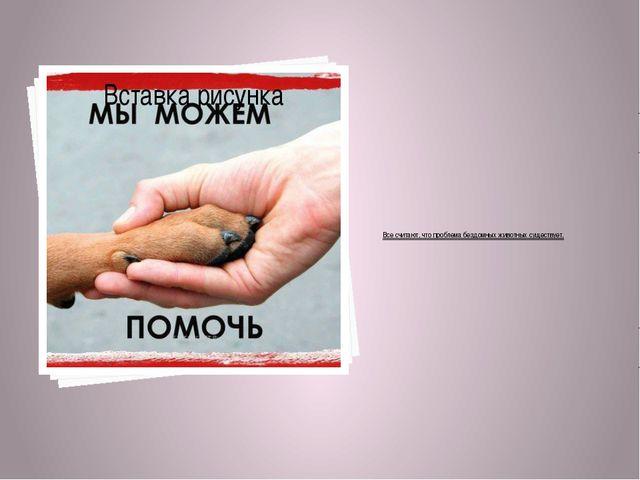 Все считают, что проблема бездомных животных существует.