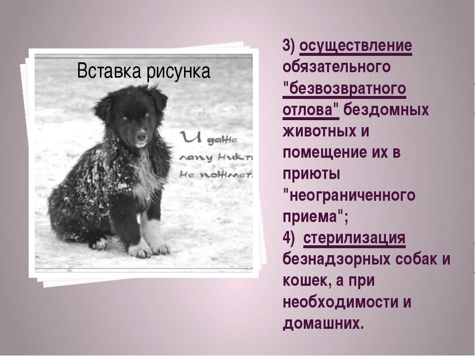 """3) осуществление обязательного """"безвозвратного отлова"""" бездомных животных и п..."""