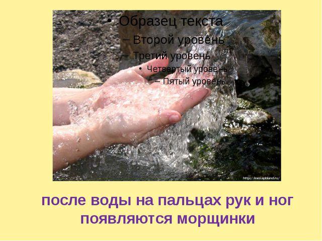 после воды на пальцах рук и ног появляются морщинки