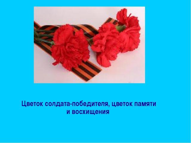 Цветок солдата-победителя, цветок памяти и восхищения