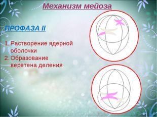 Механизм мейоза ПРОФАЗА II Растворение ядерной оболочки Образование веретена