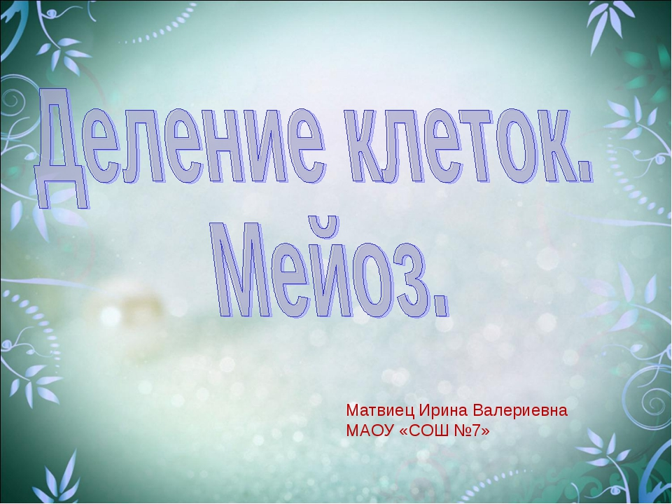Матвиец Ирина Валериевна МАОУ «СОШ №7»