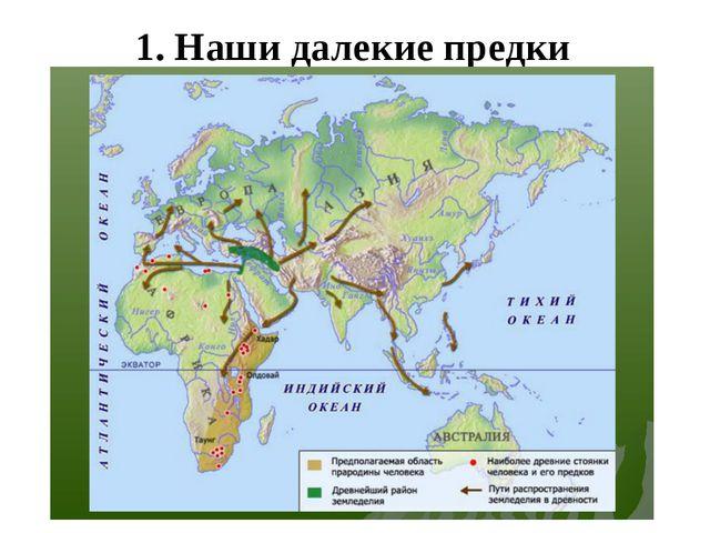 1. Наши далекие предки