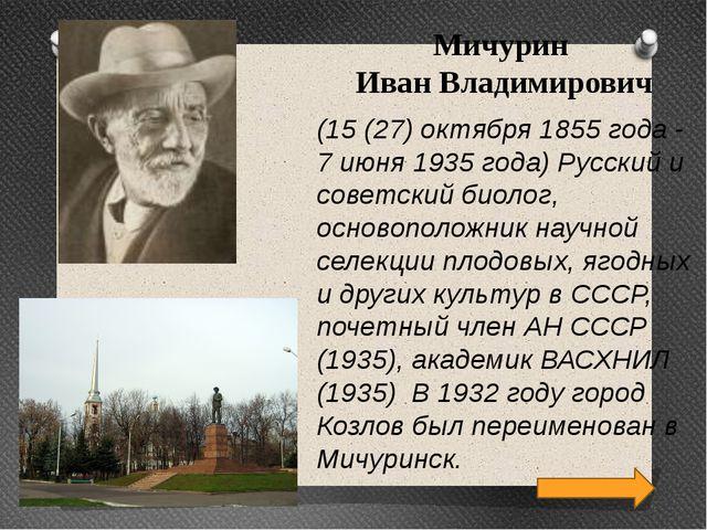 Мичурин Иван Владимирович (15 (27) октября 1855 года - 7 июня 1935 года) Русс...
