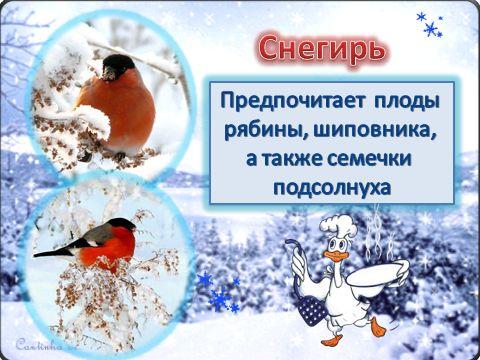 http://files.web2edu.ru/40f99cd1-2010-4836-b2e4-23c81161846d/fc5b7e1e-bd60-4559-af0a-8d0edfec0897.jpg