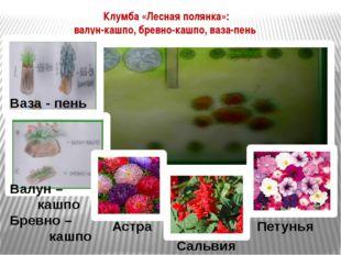Астра Сальвия Петунья Клумба «Лесная полянка»: валун-кашпо, бревно-кашпо, ваз