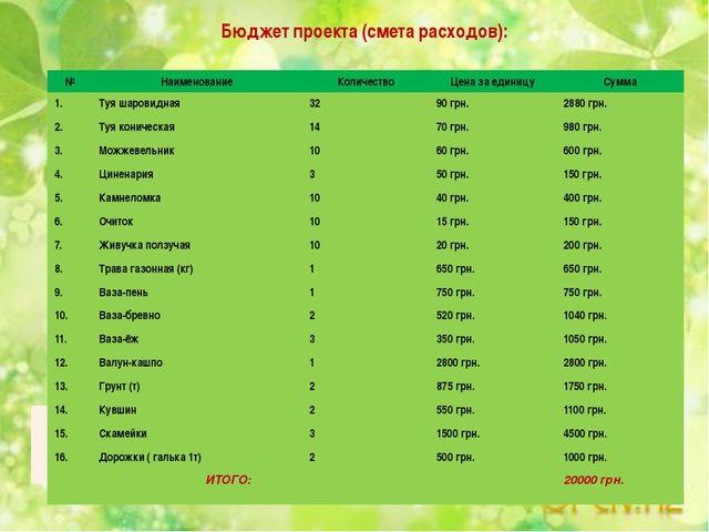 Бюджет проекта (смета расходов): № Наименование Количество Цена за единицу Су...