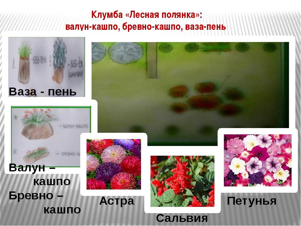 Астра Сальвия Петунья Клумба «Лесная полянка»: валун-кашпо, бревно-кашпо, ваз...