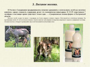 3. Лосиное молоко. В России и Скандинавии предпринимались попытки одомашнить