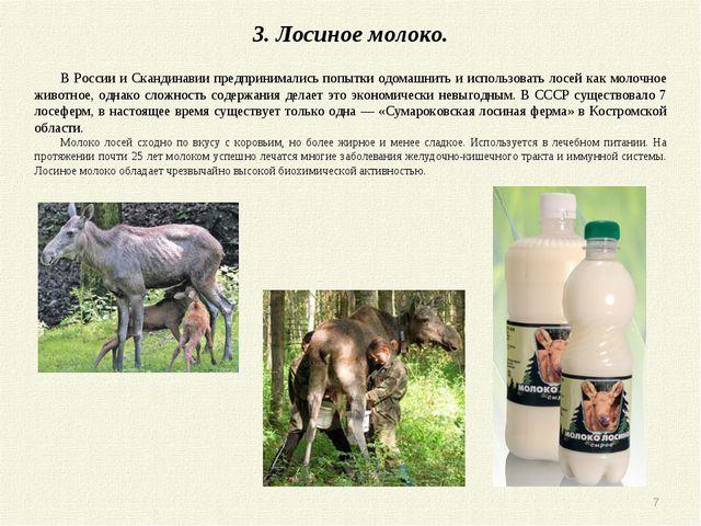 3. Лосиное молоко. В России и Скандинавии предпринимались попытки одомашнить...