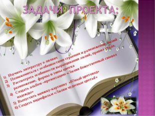 1) Изучить литературу о лилиях 2) Познакомиться с особенностями строения и ра