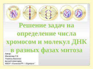 Автор Михайлова Г.В. Учитель биологии высшей категории МБОУ «Гимназии79 » г.Б