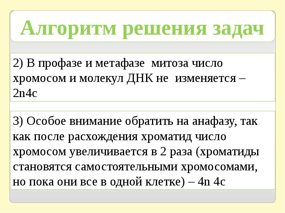 Алгоритм решения задач 2) В профазе и метафазе митоза число хромосом и молеку...