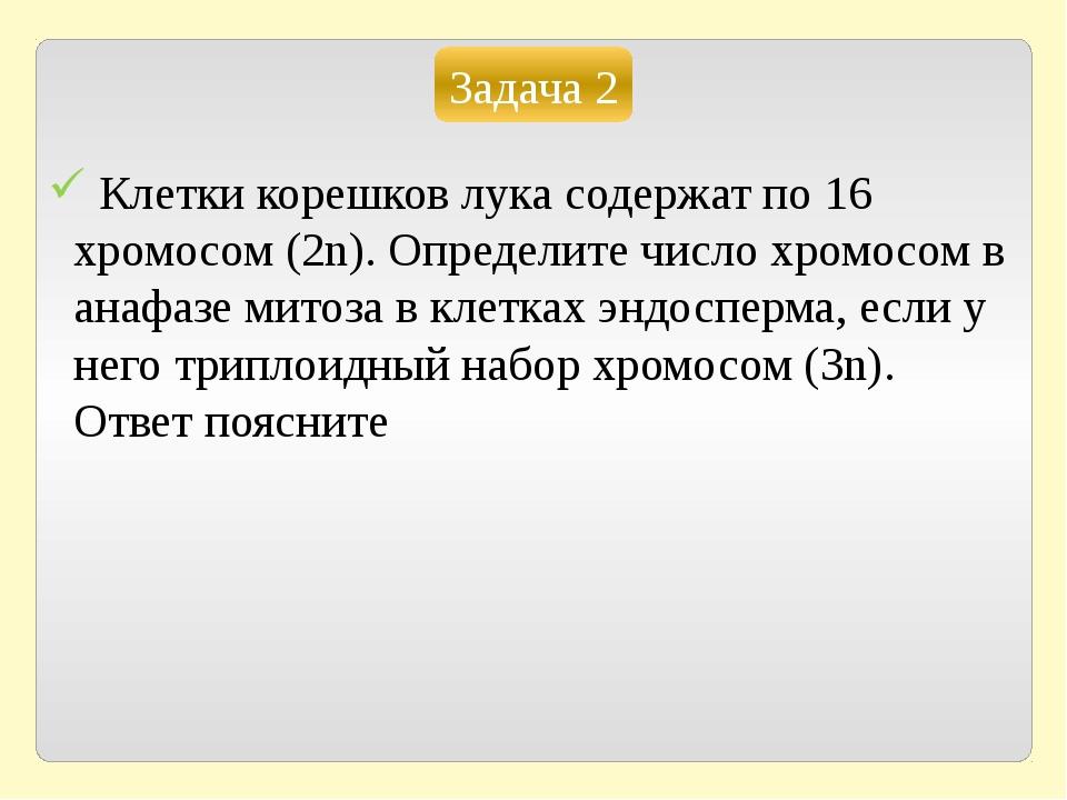 Задача 2 Клетки корешков лука содержат по 16 хромосом (2n). Определите число...