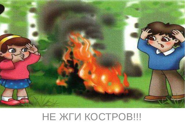 НЕ ЖГИ КОСТРОВ!!!
