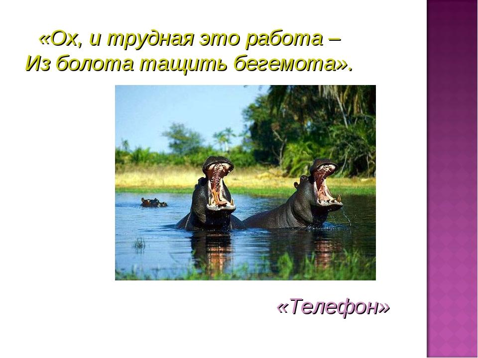 «Ох, и трудная это работа – Из болота тащить бегемота». «Телефон»