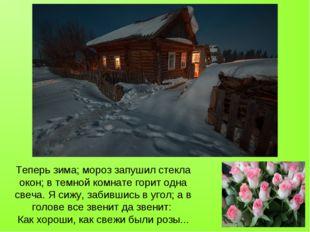 Теперь зима; мороз запушил стекла окон; в темной комнате горит одна свеча. Я