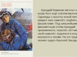 Аркадий Каманин мечтал о небе, когда был ещё совсем мальчишкой. Однажды с вы