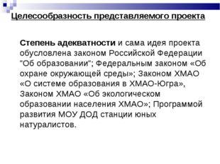 Степень адекватности и сама идея проекта обусловлена законом Российской Фе